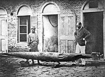 Robert Whitehead With First Tested Torpedo After Its Recovery